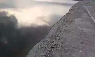 MASS FISH FALL IN KHACHEN RESERVOIR: WHAT ARE THE REASONS?